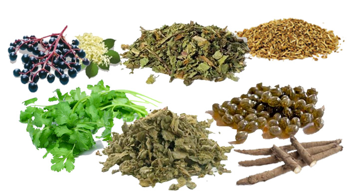 Natural Herbs To Cure Herpes